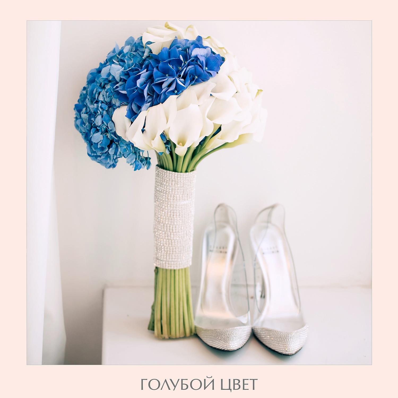 bluecolor_02